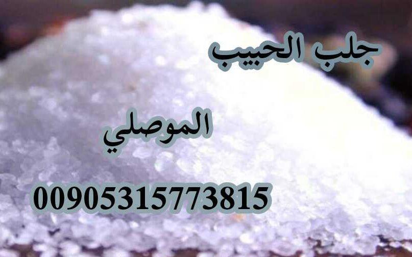 شيخ روحاني صادق بالعمل الموصلي 00905315773815
