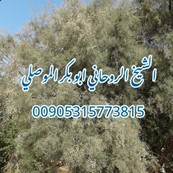 ابغى اقوى شيخ معالج روحاني الشيخ ابو بكر الموصلي